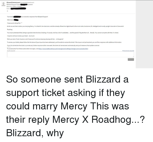 Blizzard Support Tole Dnes 9 2006 1730 Received a Nesponse