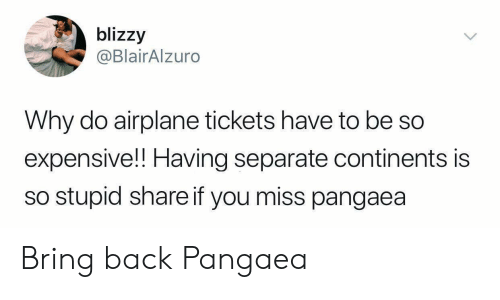Airplane, Back, and Continents: blizzy  @BlairAlzuro  Why do airplane tickets have to be so  expensive!! Having separate continents is  so stupid share if you miss pangaea Bring back Pangaea