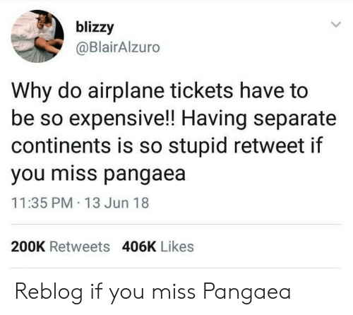 Airplane, Continents, and Why: blizzy  @BlairAlzuro  Why do airplane tickets have to  be so expensive!! Having separate  continents is so stupid retweet if  you miss pangaea  11:35 PM 13 Jun 18  200K Retweets 406K Likes Reblog if you miss Pangaea