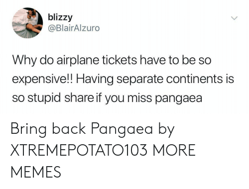 Dank, Memes, and Target: blizzy  @BlairAlzuro  Why do airplane tickets have to be so  expensive!! Having separate continents is  so stupid share if you miss pangaea Bring back Pangaea by XTREMEPOTATO103 MORE MEMES