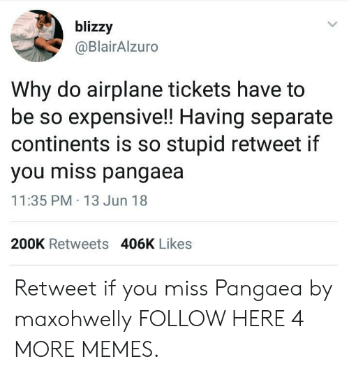 Dank, Memes, and Target: blizzy  @BlairAlzuro  Why do airplane tickets have to  be so expensive!! Having separate  continents is so stupid retweet if  you miss pangaea  11:35 PM 13 Jun 18  200K Retweets 406K Likes Retweet if you miss Pangaea by maxohwelly FOLLOW HERE 4 MORE MEMES.