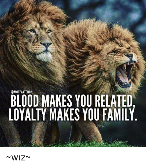 blood makes you related loyalty makes you family ~w%C4%B1z~ 4563378 blood makes you related loyalty makes you family ~wız~ bloods