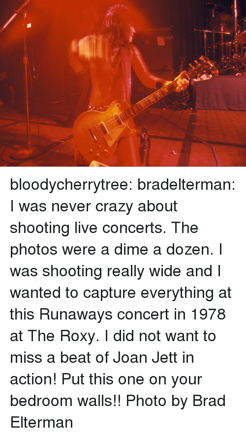 Crazy, Target, and Tumblr: bloodycherrytree:  bradelterman:  I was never crazy about shooting live concerts. The photos were a dime a dozen. I was shooting really wide and I wanted to capture everything at this Runaways concert in 1978 at The Roxy. I did not want to miss a beat of Joan Jett in action! Put this one on your bedroom walls!! Photo by Brad Elterman
