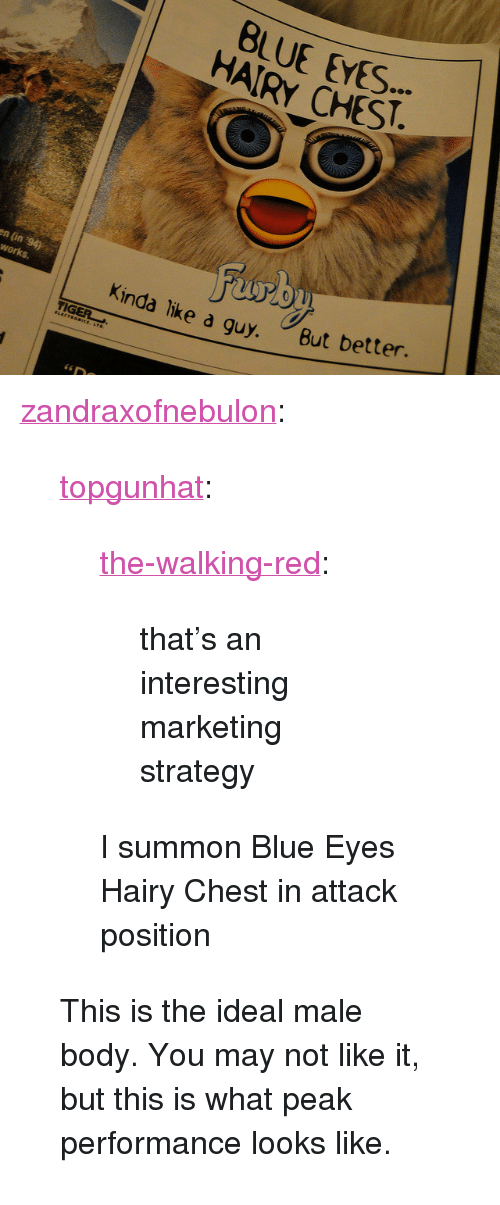 "Tumblr, Blog, and Blue: BLUE EYES  HAIRY CHEST  en (in '94)  works.  nda like a quy. But better. <p><a href=""https://zandraxofnebulon.tumblr.com/post/165953954029/topgunhat-the-walking-red-thats-an"" class=""tumblr_blog"">zandraxofnebulon</a>:</p>  <blockquote><p><a href=""http://topgunhat.tumblr.com/post/157196171392/the-walking-red-thats-an-interesting-marketing"" class=""tumblr_blog"">topgunhat</a>:</p> <blockquote> <p><a href=""http://the-walking-red.tumblr.com/post/77646382353/thats-an-interesting-marketing-strategy"" class=""tumblr_blog"">the-walking-red</a>:</p> <blockquote><p>that's an interesting marketing strategy</p></blockquote>  <p>I summon Blue Eyes Hairy Chest in attack position</p> </blockquote> <p>This is the ideal male body. You may not like it, but this is what peak performance looks like.</p></blockquote>"