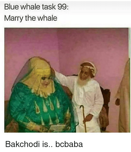 Memes, Blue, and 🤖: Blue whale task 99:  Marry the whale Bakchodi is.. bcbaba