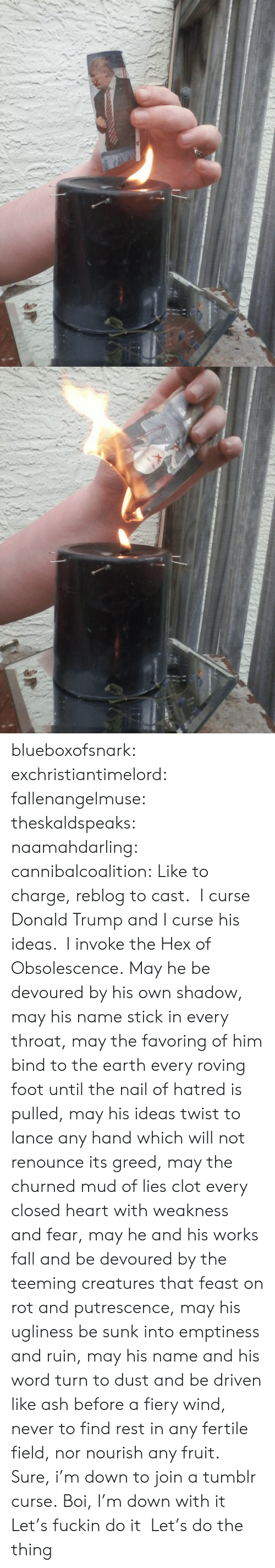 Ash, Donald Trump, and Fall: blueboxofsnark:  exchristiantimelord:  fallenangelmuse:  theskaldspeaks:  naamahdarling:  cannibalcoalition: Like to charge, reblog to cast. I curse Donald Trump and I curse his ideas. I invoke the Hex of Obsolescence.    May he be devoured by his own shadow, may his name stick in every throat, may the favoring of him bind to the earth every roving foot until the nail of hatred is pulled, may his ideas twist to lance any hand which will not renounce its greed, may the churned mud of lies clot every closed heart with weakness and fear, may he and his works fall and be devoured by the teeming creatures that feast on rot and putrescence, may his ugliness be sunk into emptiness and ruin, may his name and his word turn to dust and be driven like ash before a fiery wind, never to find rest in any fertile field, nor nourish any fruit.  Sure, i'm down to join a tumblr curse.  Boi, I'm down with it  Let's fuckin do it  Let's do the thing