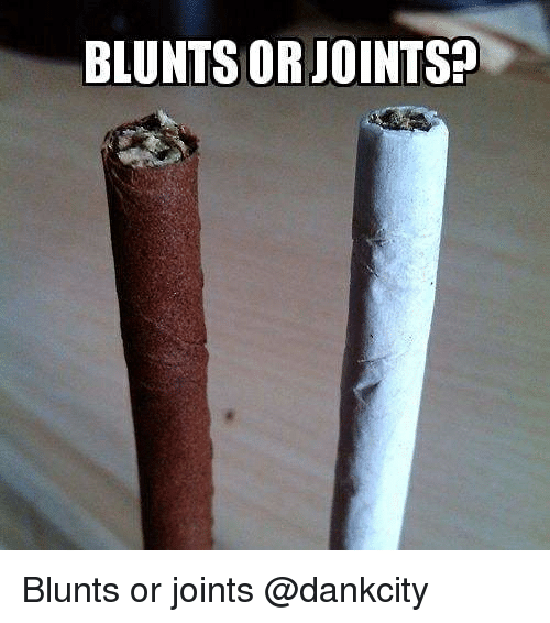 Blunts, Memes, and 🤖: BLUNTS OR JOINTS? Blunts or joints @dankcity