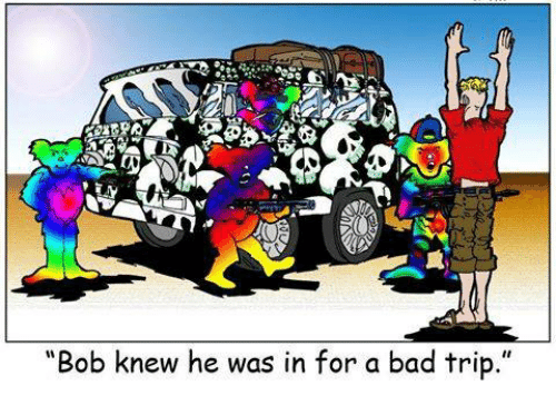 bob knew he was in for a bad trip 22989040 ✅ 25 best memes about bad trip bad trip memes,Bad Trip Meme