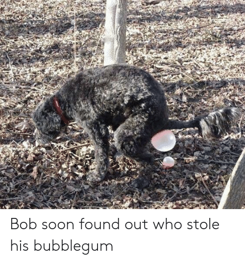 Soon..., Who, and Bob: Bob soon found out who stole his bubblegum