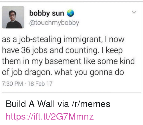 """Memes, Jobs, and Dragon: bobby sun  @touchmybobby  as a job-stealing immigrant, I now  have 36 jobs and counting. I keep  them in my basement like some kind  of job dragon. what you gonna do  7:30 PM 18 Feb 17 <p>Build A Wall via /r/memes <a href=""""https://ift.tt/2G7Mmnz"""">https://ift.tt/2G7Mmnz</a></p>"""