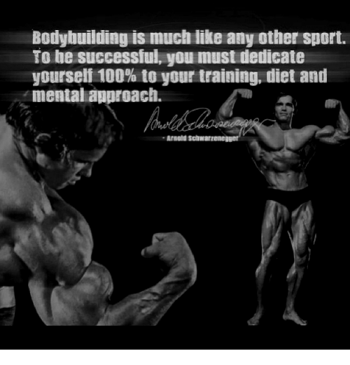 3636ea3f752f26 Bodybuilding Is Much Like Any Other Sport to Be Successful You Must ...