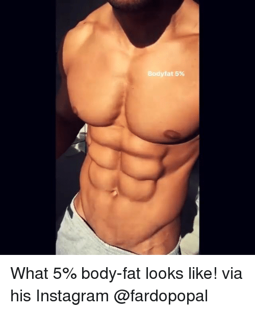 Memes Fat And  F0 9f A4  What 5 Body Fat