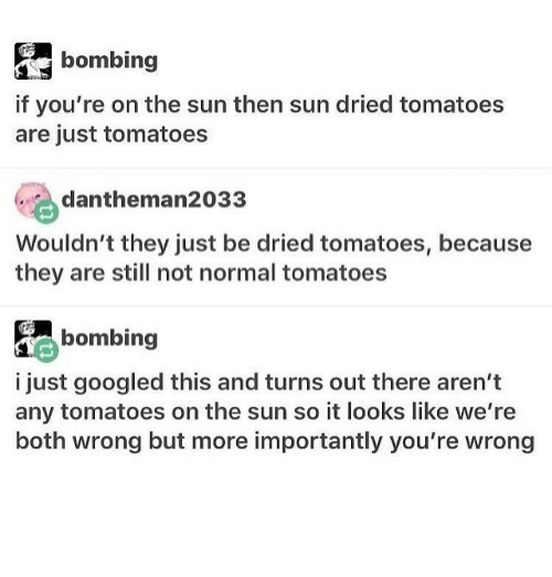 Memes, Wrongs, and 🤖: bombing  if you're on the sun then sun dried tomatoes  are just tomatoes  dantheman2033  Wouldn't they just be dried tomatoes, because  they are still not normal tomatoes  bombing  i just googled this and turns out there aren't  any tomatoes on the sun so it looks like we're  both wrong but more importantly you're wrong