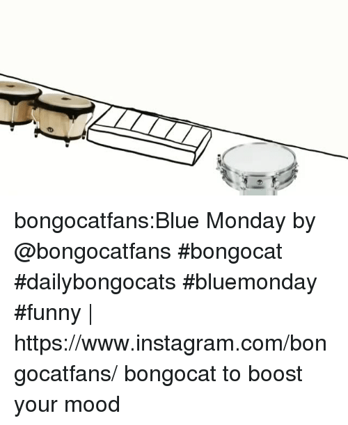 Funny, Instagram, and Mood: bongocatfans:Blue Monday by @bongocatfans #bongocat #dailybongocats #bluemonday #funny | https://www.instagram.com/bongocatfans/ bongocat to boost your mood
