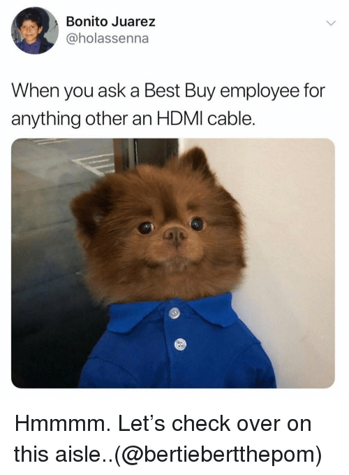 Best Buy, Funny, and Best: Bonito Juarez  @holassenna  When you ask a Best Buy employee for  anything other an HDMI cable. Hmmmm. Let's check over on this aisle..(@bertiebertthepom)