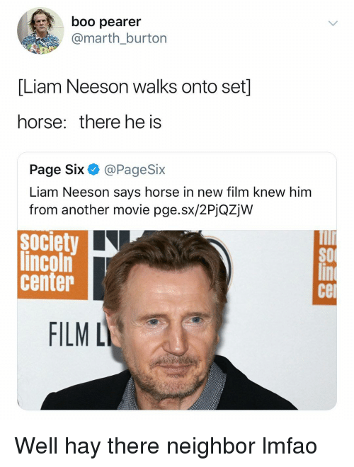 Boo, Liam Neeson, and Horse: boo pearer  @marth_burton  [Liam Neeson walks onto set]  horse: there he is  Page Six @PageSix  Liam Neeson says horse in new film knew him  from another movie pge.sx/2PjQZjW  society  lincoln  center  SO  се  FILML Well hay there neighbor lmfao