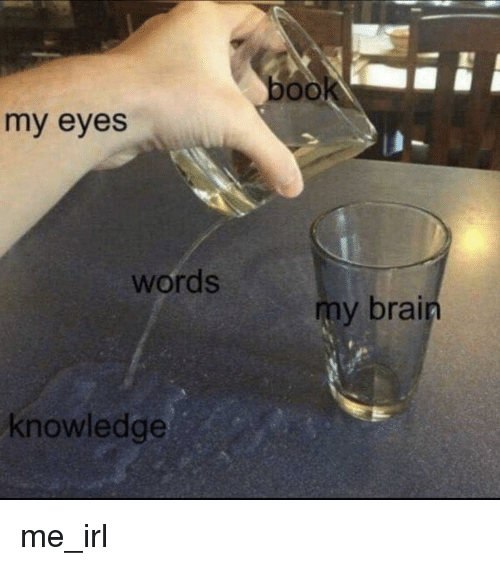 Book, Brain, and Knowledge: book  my eyes  words  my brain  knowledge