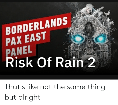 BORDERLANDS PAX EAST PANEL Risk of Rain 2 5 That's Like Not the Same