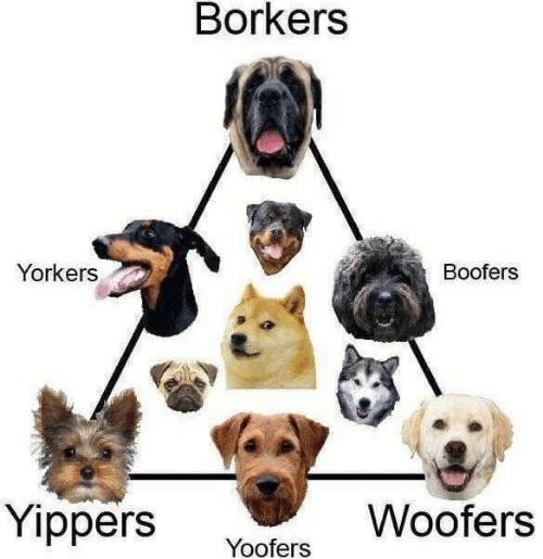 SIZZLE: Borkers  Yorkers  Boofers  Yippers  Woofers  Yoofers