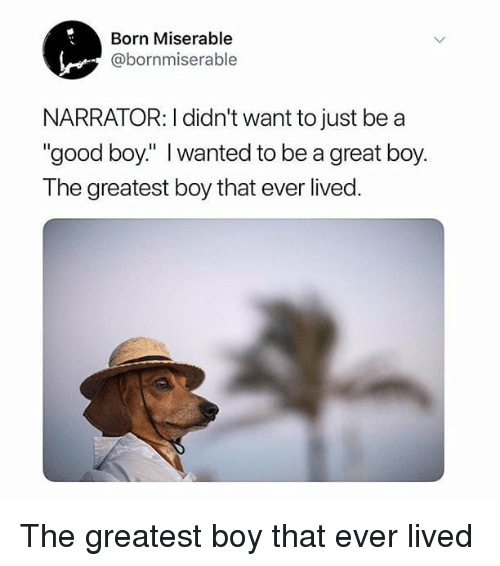 """Memes, Good, and Boy That: Born Miserable  @bornmiserable  NARRATOR: I didn't want to just be a  """"good boy"""" I wanted to be a great boy  The greatest boy that ever lived The greatest boy that ever lived"""