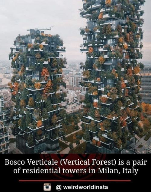 Memes, Italy, and 🤖: Bosco Verticale (Vertical Forest) is a pair  of residential towers in Milan, Italy  weirdworldinsta