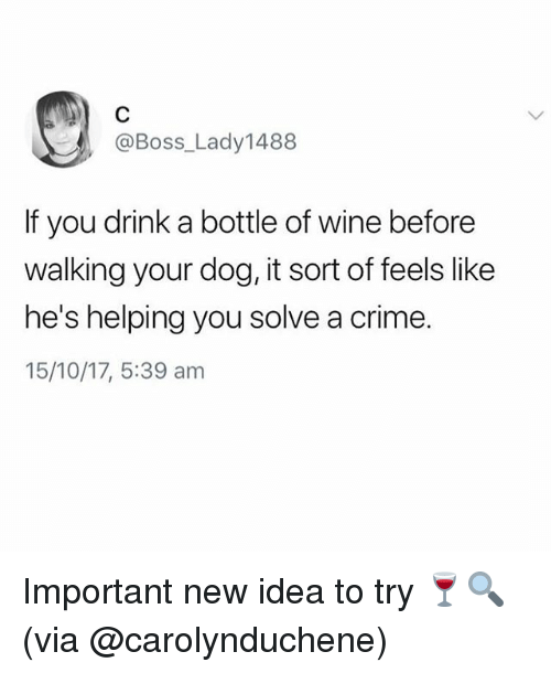 Crime, Memes, and Wine: @Boss_Lady1488  If you drink a bottle of wine before  walking your dog, it sort of feels like  he's helping you solve a crime.  15/10/17, 5:39 am Important new idea to try 🍷🔍(via @carolynduchene)