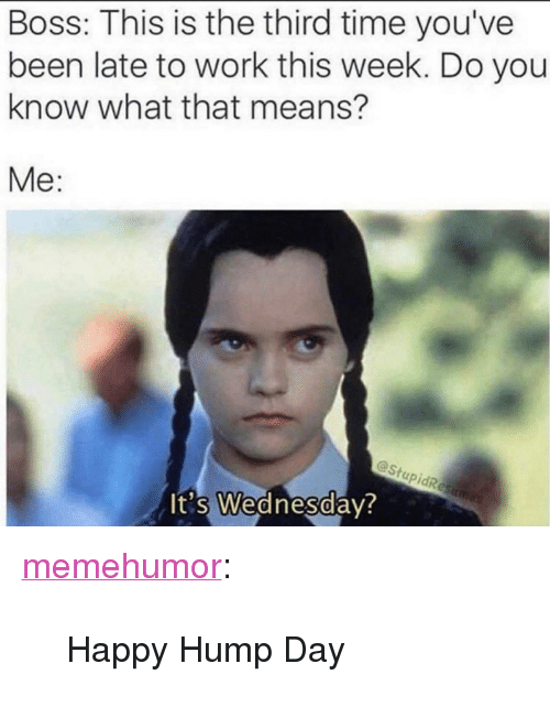 """Hump Day, Tumblr, and Work: Boss: This is the third time you've  been late to work this week. Do you  know what that means?  Me:  @Stu  0  t's Wednesday <p><a href=""""http://memehumor.net/post/166812056138/happy-hump-day"""" class=""""tumblr_blog"""">memehumor</a>:</p>  <blockquote><p>Happy Hump Day</p></blockquote>"""