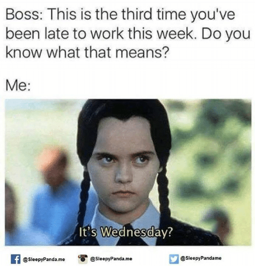 Memes, Work, and Panda: Boss: This is the third time you've  been late to work this week. Do you  know what that means?  Me  It's Wednesday?  @sleepy Panda.me  @sleepy Pandame  @sleepy Panda me