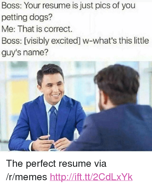 "Dogs, Memes, and Http: Boss: Your resume is just pics of you  petting dogs?  Me: That is correct.  Boss: [visibly excited] w-what's this little  guy's name? <p>The perfect resume via /r/memes <a href=""http://ift.tt/2CdLxYk"">http://ift.tt/2CdLxYk</a></p>"