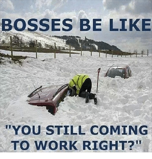 "Be Like, Memes, and Work: BOSSES BE LIKE  ""YOU STILL COMING  TO WORK RIGHT?"