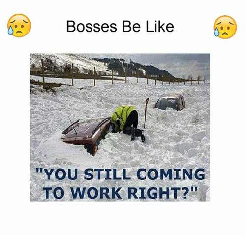 25+ Best Memes About You Still Coming to Work Right | You ...