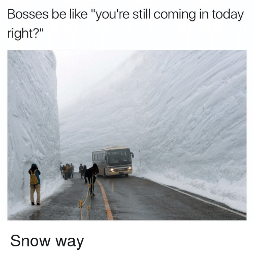"Funny, Bosses-Be-Like, and Boss Be Like: Bosses be like ""you're still coming in today  right?"" Snow way"