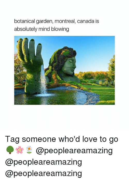 Love, Memes, and Canada: botanical garden, montreal, canada is  absolutely mind blowing Tag someone who'd love to go 🌳🌸🌼 @peopleareamazing @peopleareamazing @peopleareamazing