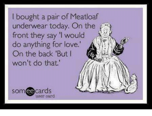 Love, Memes, and Meatloaf: bought a pair of Meatloaf  underwear today. On the  front they say 'I would  do anything for love  On the back But l  won't do that.  someecards  user card