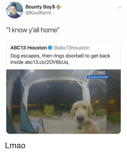 "Lmao, Memes, and Abc13: Bounty Boy$o  @KoolKerm  ""I know y'all home""  ABC13 Houston @abc13houston  Dog escapes, then rings doorbell to get back  inside abc13.co/20V6bUq  Greg Basel/Storyful Lmao"