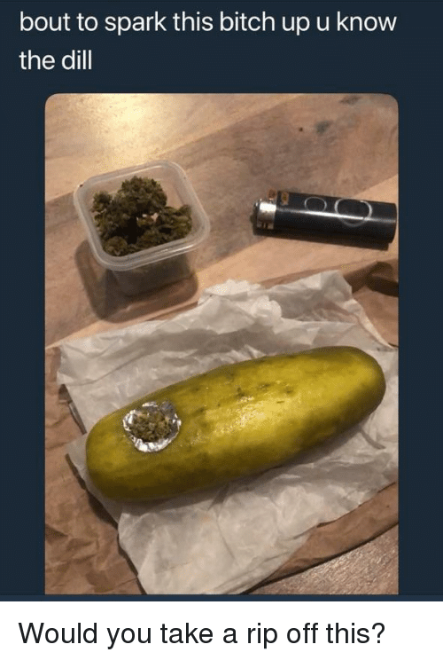 Weed, Dill, and Rip: bout to spark this bitch up u know  the dill