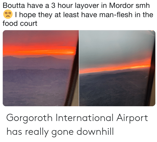 Food, Smh, and Lord of the Rings: Boutta have a 3 hour layover in Mordor smh  I hope they at least have man-flesh in the  food court Gorgoroth International Airport has really gone downhill