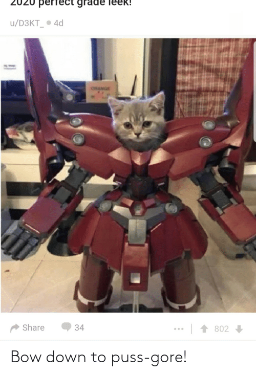 Down, Bow, and Gore: Bow down to puss-gore!