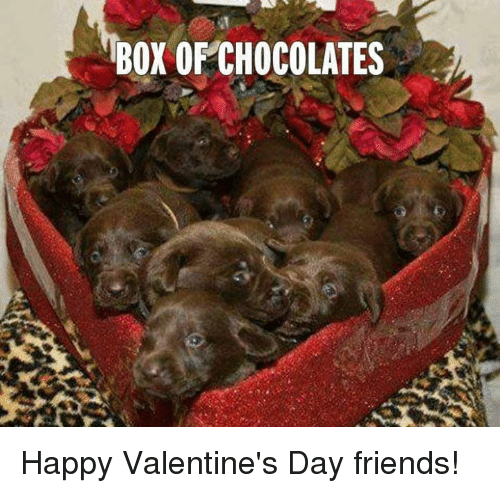Box Of Chocolates Happy Valentine S Day Friends Boxing Meme On Me Me