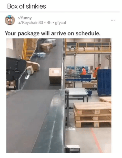 Funny, Memes, and Schedule: Box of slinkies  r/funny  u/Keychain33.4h gfycat  Your package will arrive on schedule.