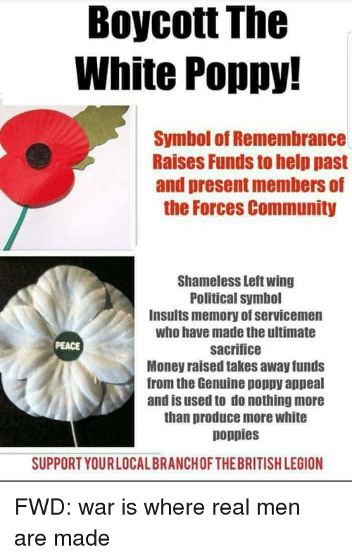 Boycott The White Poppy Symbol Of Remembrance Raises Funds To Help