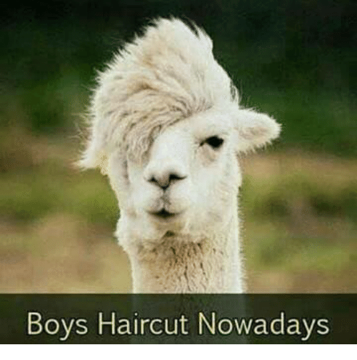 Boys Haircut Nowadays Funny Meme On Me Me