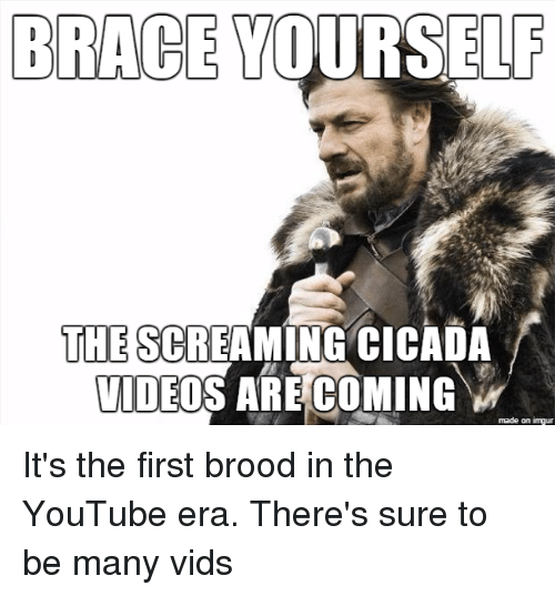 25 best memes about brace yourself winter is coming brace youtube video and brace yourself brace yourself the screaming cicada video are coming made on inngur solutioingenieria Choice Image