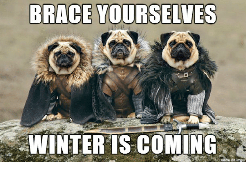 Brace Yourselves Summer Is Coming: BRACE YOURSELVES WINTER IS COMING