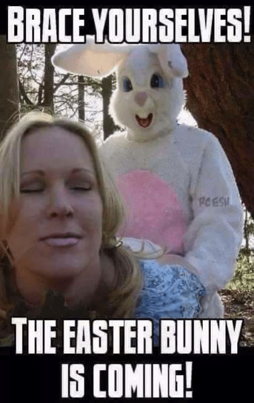 Easter Memes 33 Funny Easter Memes To Share With Shotoe