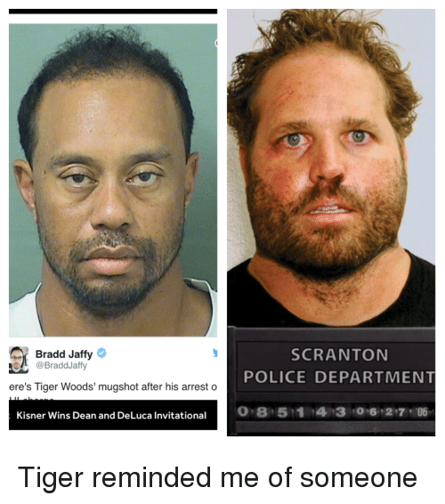 Police, The Office, and Tiger Woods: Bradd Jaffy  @Bradd Jaffy  ere's Tiger Woods' mugshot after his arrest o  Kisner Wins Dean and DeLuca Invitational  SCRANTON  POLICE DEPARTMENT  06