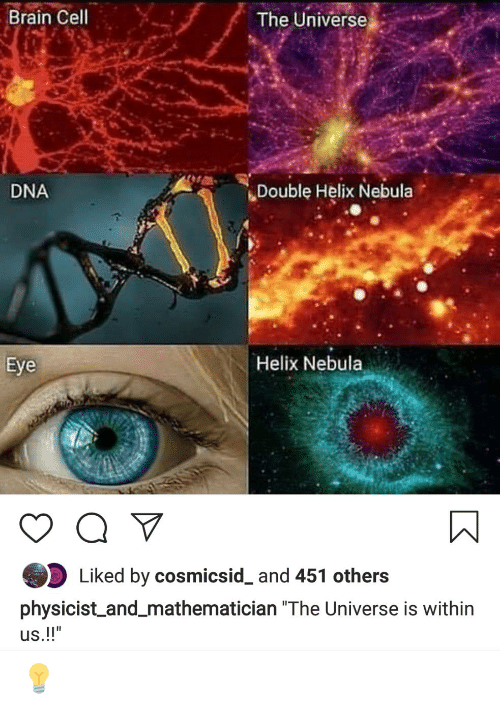 """Brain, Helix, and Dna: Brain Cell  The Universe  Double Helix Nebula  DNA  Eye  Helix Nebula  Liked by cosmicsid_ and 451 others  physicist and_mathematician """"The Universe is within 💡"""