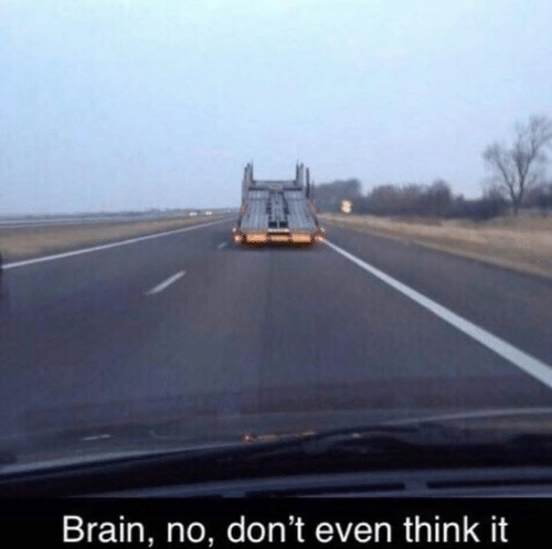 Brain, Think, and  No: Brain, no, don't even think it