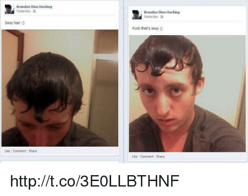 Memes, 🤖, and Dion: Brandon Dion Hocking  Yesterday  Sexy hair  Uke Comment Share  Brandon Dion Hocking  Yesterday  Fuck that's sexy  Like Comment Share http://t.co/3E0LLBTHNF