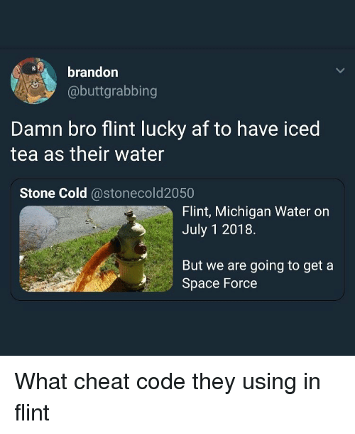 Af, Funny, and Michigan: brandor  @buttgrabbing  Damn bro flint lucky af to have iced  tea as their water  Stone Cold @stonecold2050  Flint, Michigan Water on  July 1 2018.  But we are going to get a  Space Force What cheat code they using in flint